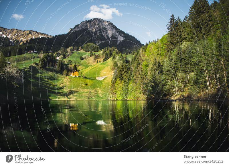 Seewald See Berge u. Gebirge Umwelt Natur Frühling Sommer ästhetisch nass blau Seewaldsee Bundesland Vorarlberg Österreich Alpen Gebirgssee Wald Walsertal