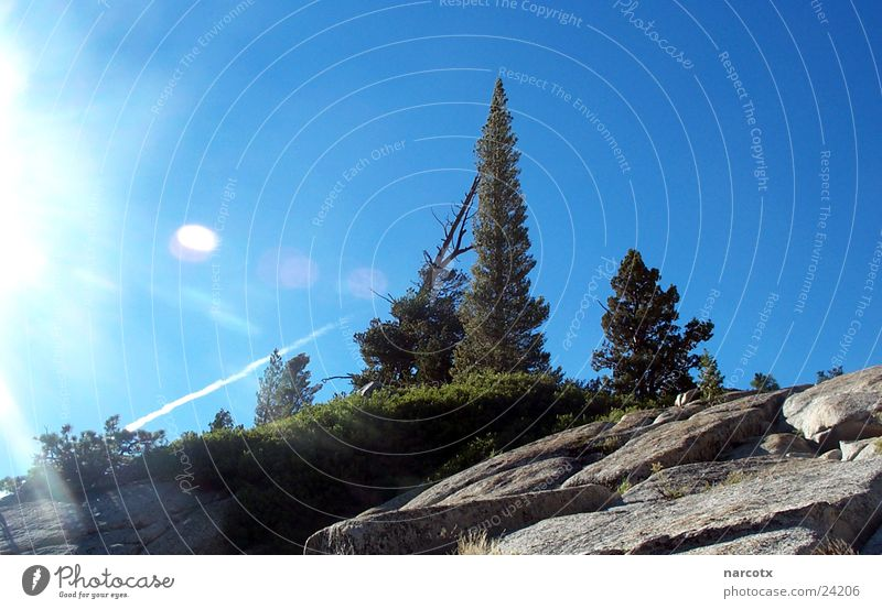 lonely mountain Baum Sonne Berge u. Gebirge Stein Felsen USA Amerika Glätte blenden Steigung Südwest