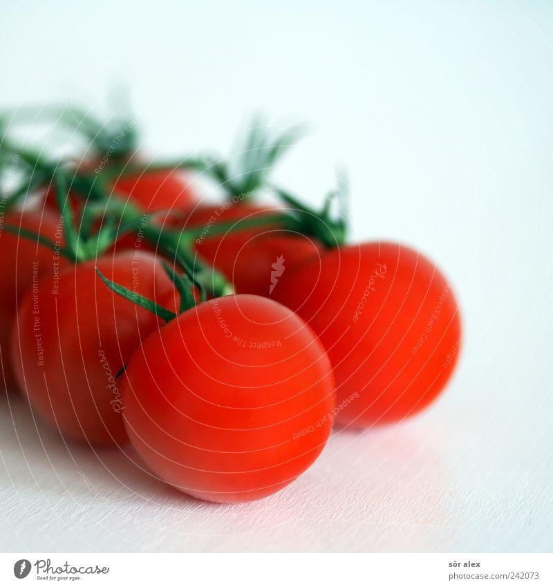 rotweiß Lebensmittel Gemüse Bioprodukte Vegetarische Ernährung Diät Tomate frisch lecker natürlich rund grün Teamwork Strauchtomate Gesunde Ernährung