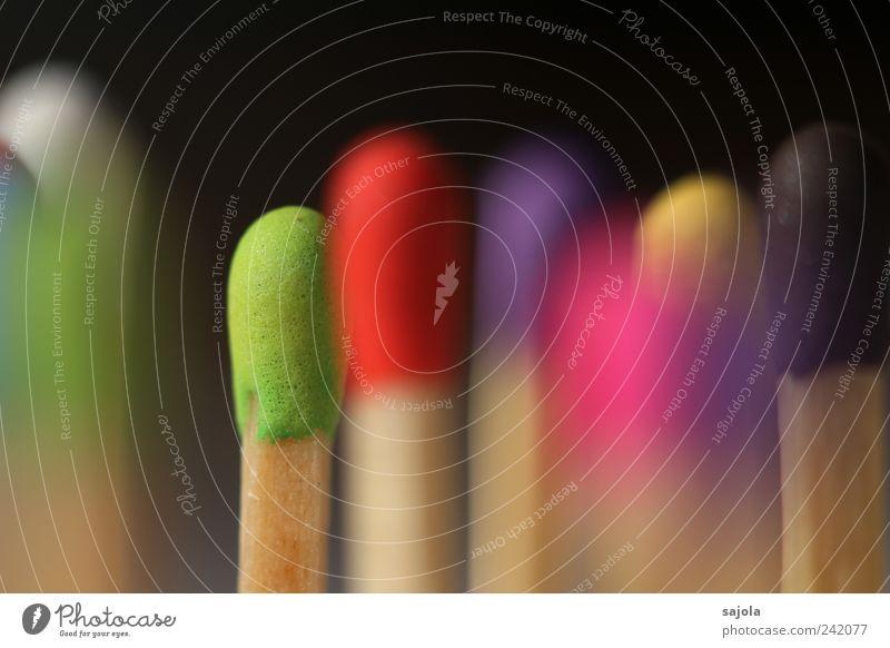 im fokus Holz stehen Brennpunkt fokussieren Konzentration mehrfarbig Streichholz streichholzkopf Vielfältig viele vertikal mehrere Verschiedenheit unbenutzt