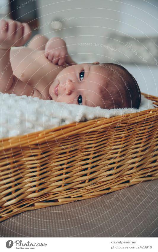 Baby in einem Weidenkorb liegend schön Haut Leben ruhig Schlafzimmer Kind Mensch Frau Erwachsene Kindheit authentisch klein nackt neu niedlich unschuldig Korb