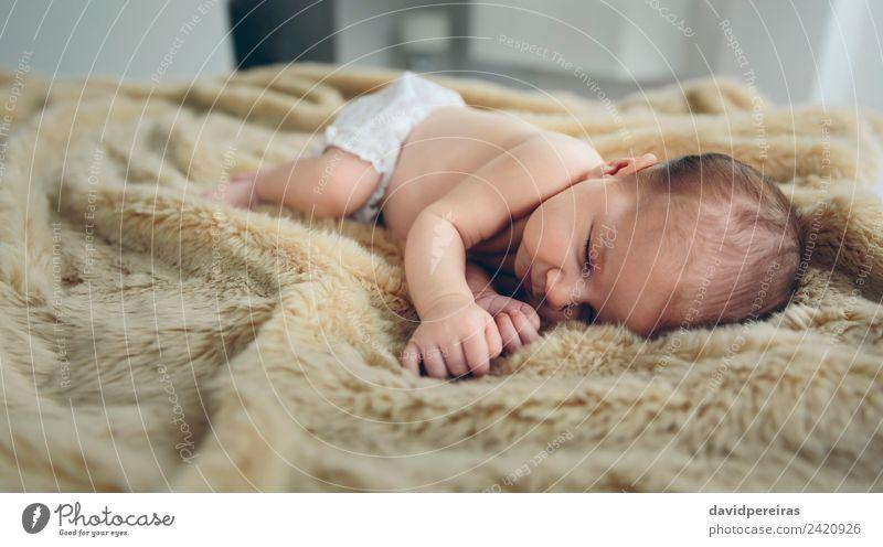 Baby schläft auf einer Decke schön ruhig Schlafzimmer Kind Mensch Frau Erwachsene Kindheit Wärme schlafen authentisch klein nackt niedlich bequem unschuldig