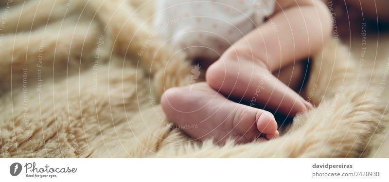 Detail der neugeborenen Babyfüße schön ruhig Kind Mensch Frau Erwachsene Kindheit Fuß Wärme authentisch klein nackt niedlich bequem unschuldig panoramisch