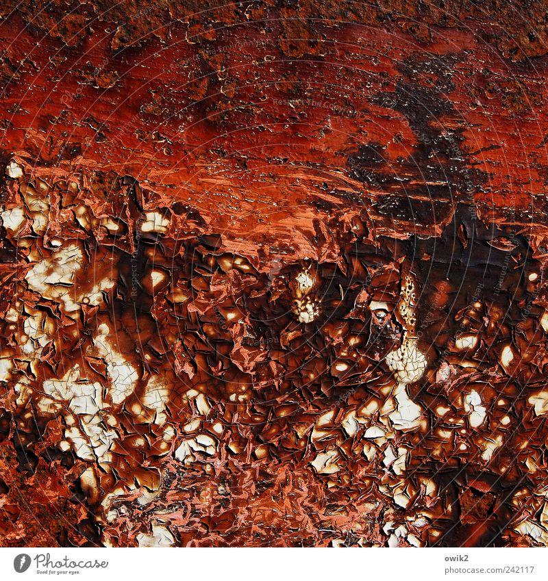 Alte Farbe alt weiß rot schwarz Farbstoff braun Metall dreckig verrückt nah trashig Riss abblättern Farbenspiel morbid Farbenwelt