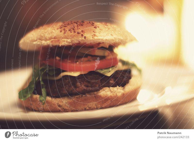 Mittagspause Lebensmittel Brötchen Ernährung Fastfood Hamburger Fleischklösse Sesam lecker Appetit & Hunger mehrfarbig Innenaufnahme Nahaufnahme Menschenleer
