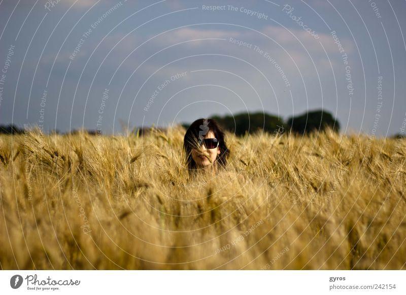 Kopf im Stroh elegant Mensch Frau Erwachsene 1 Luft Himmel Horizont Sommer Nutzpflanze Feld Sonnenbrille Duft entdecken Erholung träumen Gefühle Freude