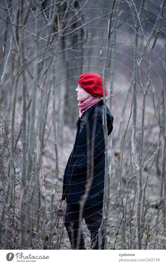 Draussen elegant Gesundheit Erholung ruhig Ausflug Abenteuer Ferne Freiheit Umwelt Natur Landschaft Baum Wald Mantel Mütze Einsamkeit Gefühle Hoffnung Leben
