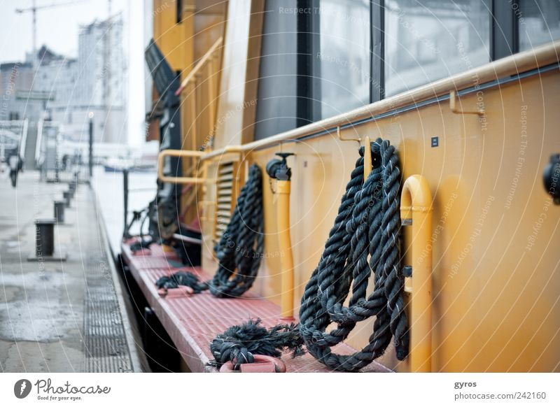 King of the see Ferien & Urlaub & Reisen Ferne kalt Freiheit grau See Ausflug Tourismus Skyline Schifffahrt Sightseeing Wasserfahrzeug Bootsfahrt Städtereise Binnenschifffahrt Passagierschiff