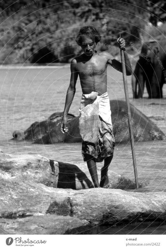 Mahout - Sri Lanka Mensch Mann Wasser Arbeit & Erwerbstätigkeit Elefant