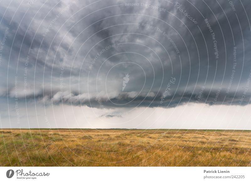 Escape Himmel Natur Pflanze Wolken Umwelt Wiese dunkel Landschaft Wand grau Regen Wetter Erde Wind Klima Insel