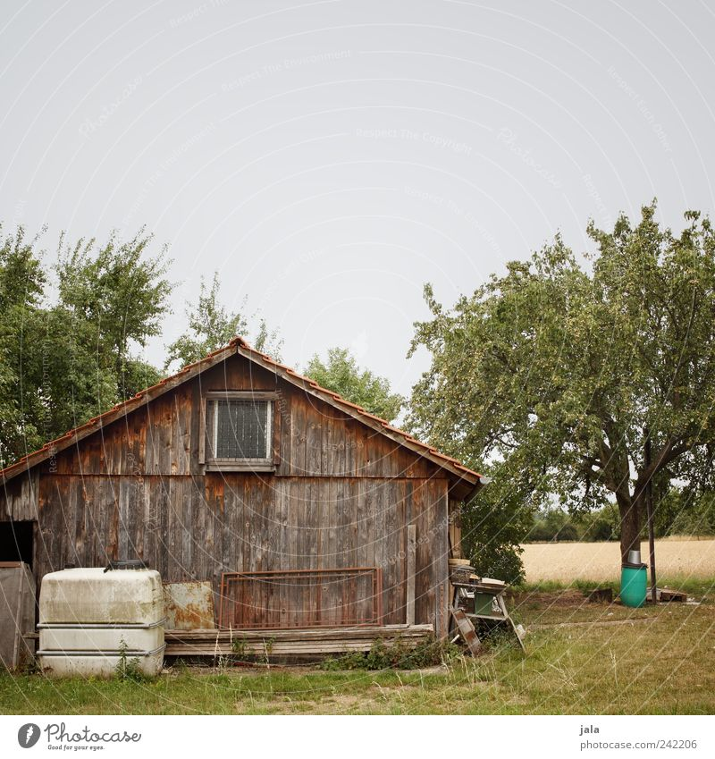 schuppen Natur Landschaft Pflanze Himmel Baum Gras Sträucher Wiese Feld Hütte Bauwerk Gebäude alt natürlich braun gelb grau grün Farbfoto Außenaufnahme