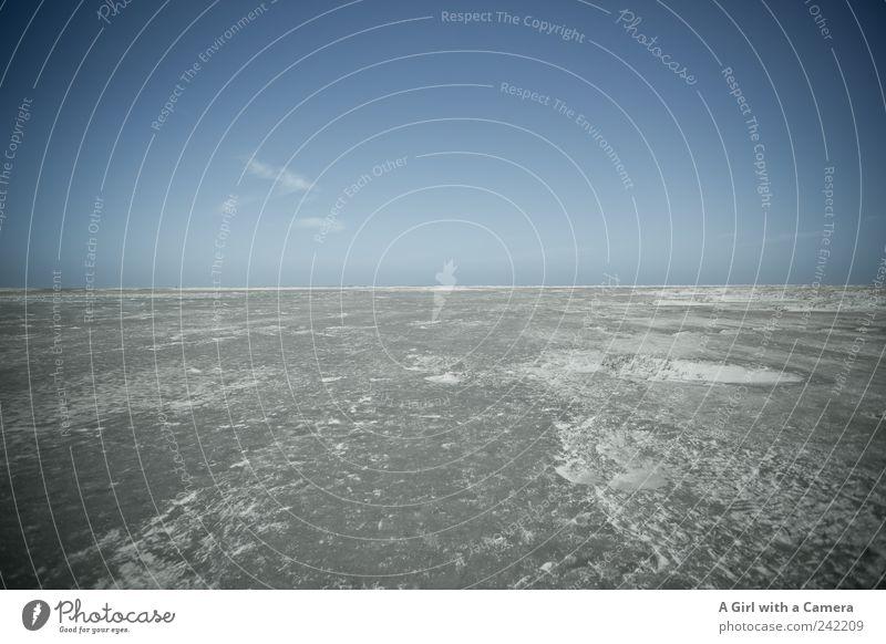 Spiekeroog l weit Himmel Natur blau Sommer Meer Strand ruhig Ferne Erholung Umwelt Landschaft Sand Küste Horizont Wetter wild