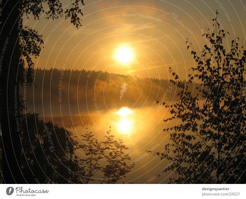 Schweden - Natur pur Wasser Himmel Baum Sonne ruhig Blatt Wald See orange Nebel Horizont Tanne blenden Rahmen