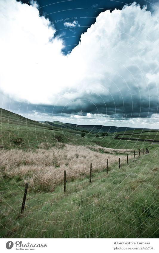 cloudbreak Umwelt Natur Landschaft Pflanze Urelemente Himmel Wolken Gewitterwolken Frühling Sommer Klima Klimawandel Wetter schlechtes Wetter Unwetter Wind