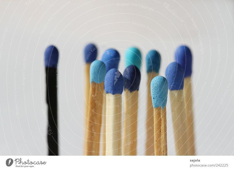 integrierter aussenseiter - mir hei e verein blau Holz mehrere stehen Team viele Gesellschaft (Soziologie) Zusammenhalt Teamwork Streichholz vertikal Mischung