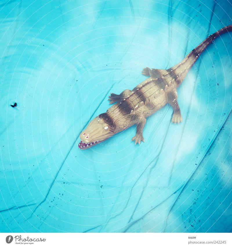 Wellnessi Freude Sommer Schwimmbad Wasser Fliege Spielzeug liegen warten lustig nass blau gefährlich Krokodil hell-blau Gummi Bodenbelag Figur Wasseroberfläche