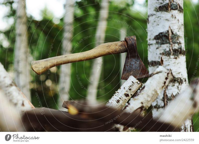 Hacken von Birken mit Axt für Brennholz sparen Garten Arbeit & Erwerbstätigkeit Industrie Natur Baum Gras Wald Holz natürlich wild braun grün hacken geschnitten