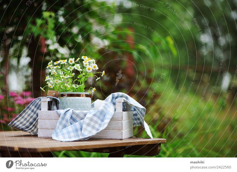 Natur Sommer Pflanze Blume natürlich Garten Freizeit & Hobby hell Dekoration & Verzierung Wachstum frisch Tisch Jahreszeiten Bauernhof Stoff Ernte