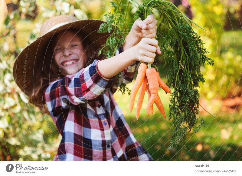 Kind Natur Landschaft Freude Lifestyle Herbst lustig natürlich Familie & Verwandtschaft Wachstum Gemüse Jahreszeiten Bauernhof Ernte ökologisch ländlich