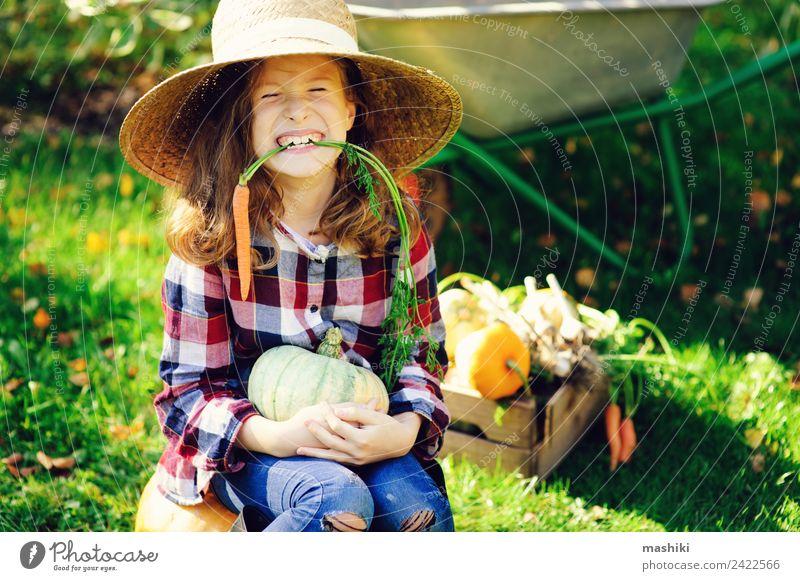 Kind Natur grün Freude Mädchen Lifestyle Herbst lustig natürlich Glück klein Wachstum frisch Gemüse Jahreszeiten Bauernhof