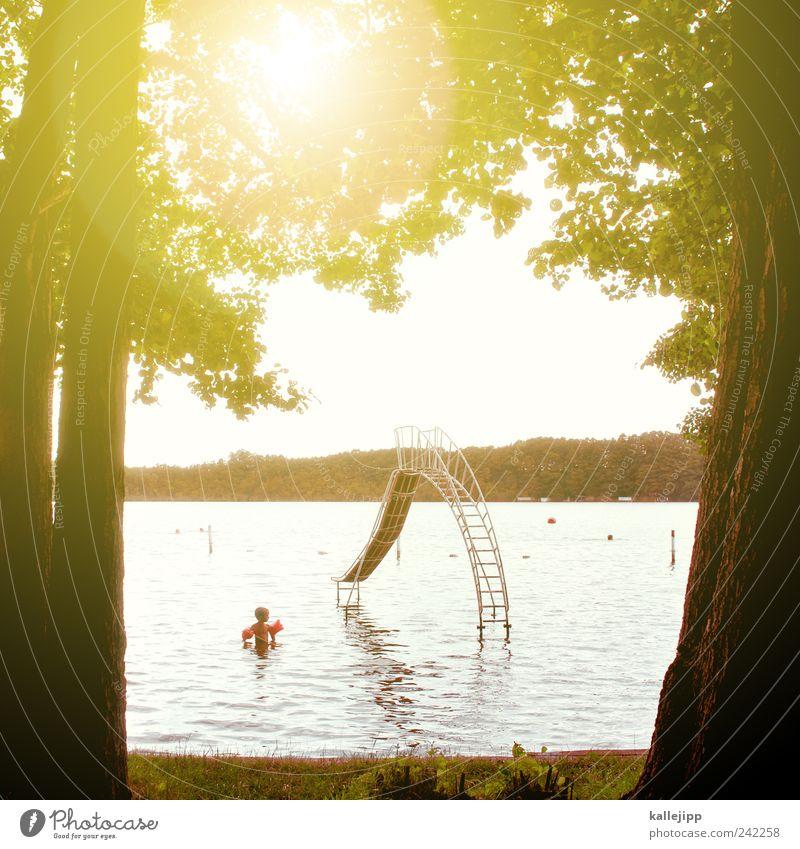 mutprobe Mensch Kind Wasser Baum Freude Spielen See Kindheit Freizeit & Hobby Schwimmen & Baden Schwimmbad Schwimmhilfe Reflexion & Spiegelung Rutsche Gegenlicht 3-8 Jahre