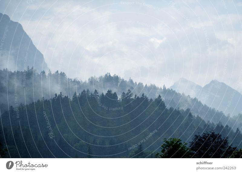 Hans Dampf auf allen Hügeln Natur Wasser Baum Wolken Wald Berge u. Gebirge Regen Landschaft Luft Wetter ästhetisch Klima Alpen Schönes Wetter Wasserdampf