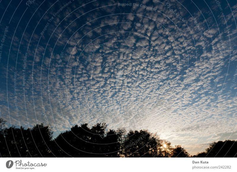 Der Himmel klart auf Natur schön blau Sommer ruhig Wolken Leben Zufriedenheit Romantik Lebensfreude Mut Schönes Wetter Optimismus Formation Naturphänomene