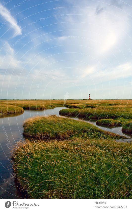 Westerhever Weite Himmel Natur blau grün Ferien & Urlaub & Reisen Pflanze Sommer Wolken Ferne Erholung Umwelt Landschaft Wiese Freiheit Gras Küste