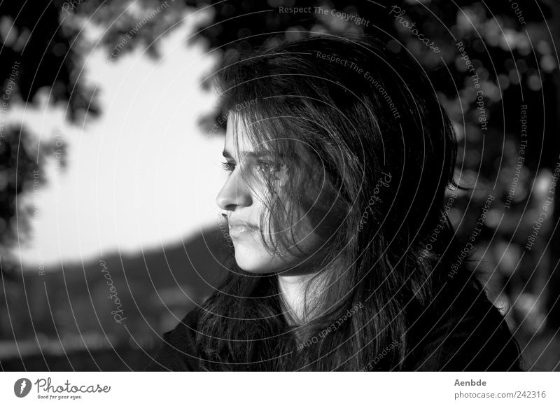 Portrait nr2 schön harmonisch Wohlgefühl Zufriedenheit ruhig Sommer Mensch feminin Junge Frau Jugendliche Kopf 1 18-30 Jahre Erwachsene Natur Baum Park