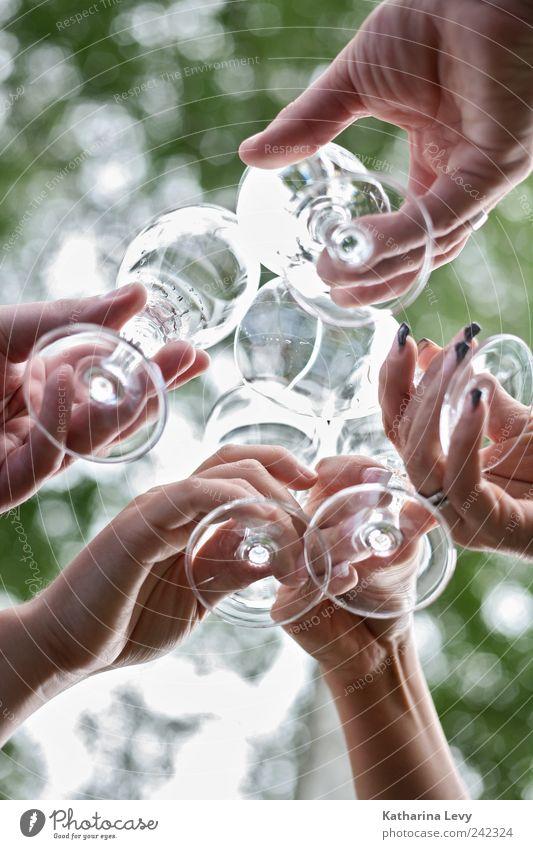 Prost! Mensch grün weiß Hand Leben Menschengruppe Freundschaft Feste & Feiern Zusammensein Glas Geburtstag authentisch frisch Fröhlichkeit trinken Flüssigkeit