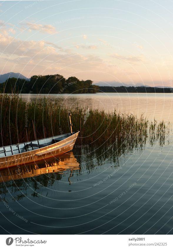 Abends am See Natur Wasser Sommer Ferien & Urlaub & Reisen Einsamkeit Erholung Freiheit Berge u. Gebirge Landschaft Glück Küste Wasserfahrzeug Zufriedenheit