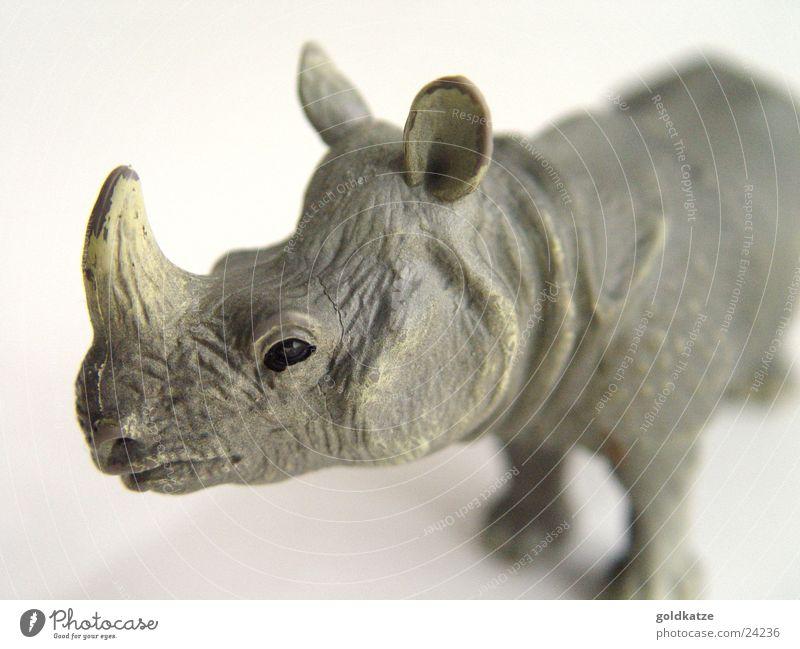 nashorn Natur Tier Spielen Umwelt grau Kopf Kindheit Kraft wild Kraft gefährlich Wildtier bedrohlich Kunststoff Spielzeug Asien