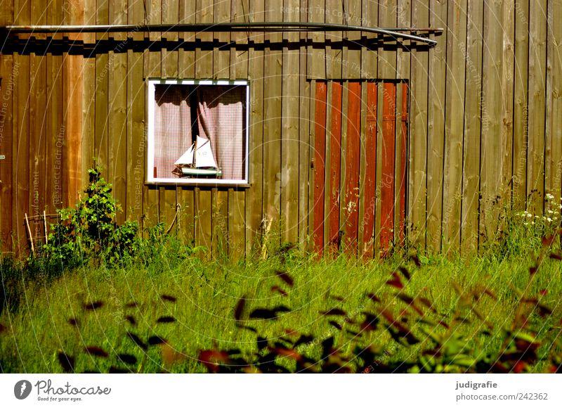 Hafenidylle Pflanze Gras Fischerdorf Haus Hütte Bauwerk Gebäude Mauer Wand Fassade Fenster Tür einfach Kitsch Segelboot Gardine Farbfoto Außenaufnahme