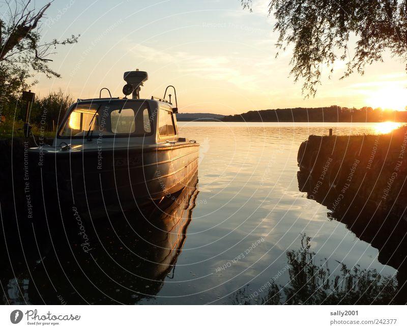 Im sicheren Hafen Wasser Sonne Sommer Ferien & Urlaub & Reisen Erholung Freiheit Landschaft Küste Stimmung See Wasserfahrzeug glänzend gold Ausflug Insel