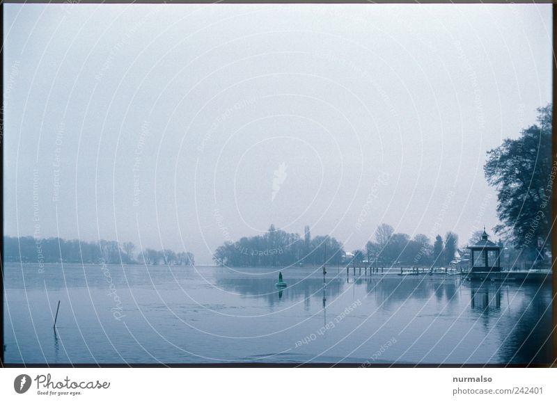 wirklich Trist III Lifestyle Angeln Ausflug Kunst Umwelt Landschaft Horizont Klima schlechtes Wetter Nebel Eis Frost Flussufer Havel Binnenschifffahrt Fähre