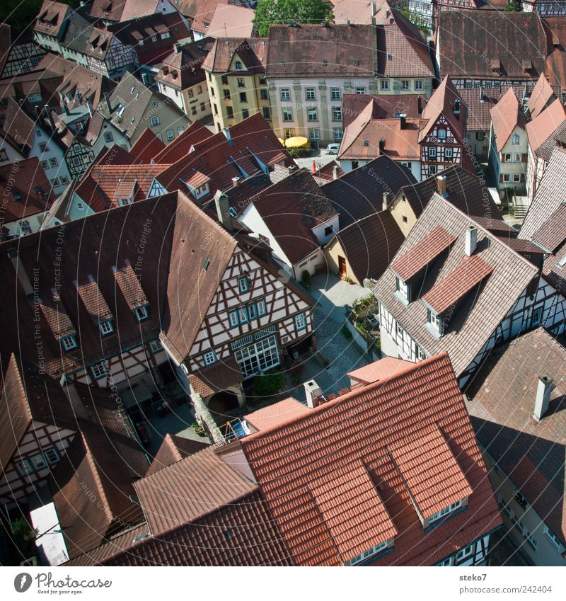 Downtown Dorf Stadtzentrum Platz Dach rot Fachwerkhaus Sommertag Bad Wimpfen Rheinland-Pfalz Mittelalter Farbfoto Außenaufnahme Vogelperspektive
