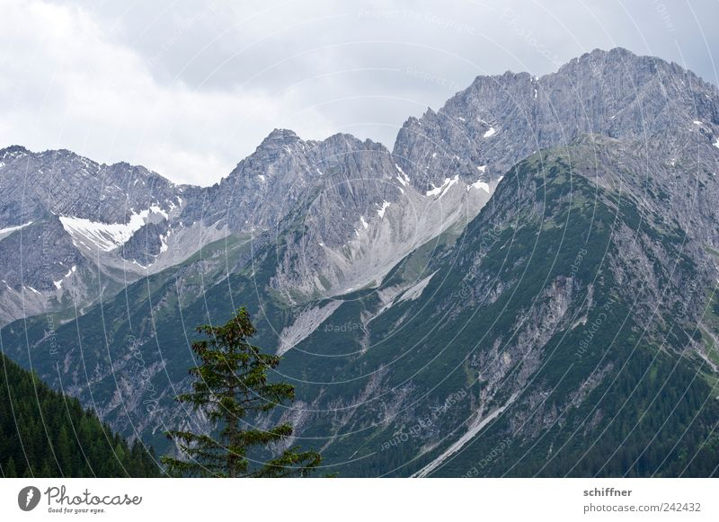 Hahntennjoch Natur Himmel Baum Wolken Wald Berge u. Gebirge Landschaft Felsen hoch Alpen Gipfel Berghang Bergkette schlechtes Wetter Schneebedeckte Gipfel