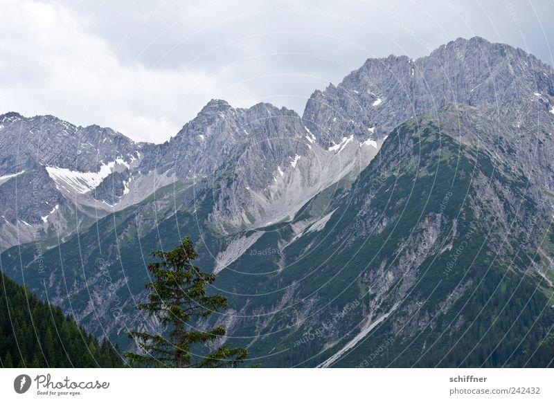 Hahntennjoch Natur Landschaft Himmel Wolken schlechtes Wetter Felsen Alpen Berge u. Gebirge Gipfel Schneebedeckte Gipfel hoch Baum Wald Berghang Bergkette