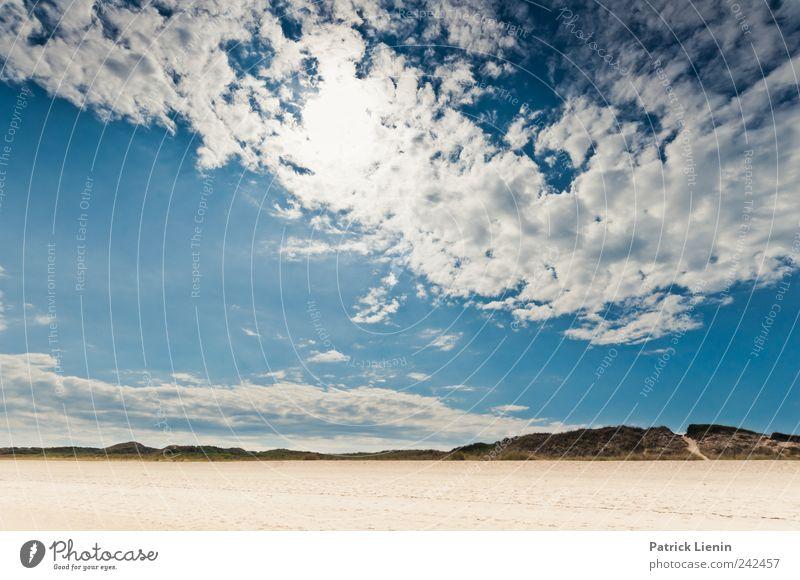 Auf der Flucht Himmel Natur Pflanze Sonne Sommer Strand Ferien & Urlaub & Reisen Meer Wolken Einsamkeit Freiheit Landschaft Umwelt Küste Wetter Wellen