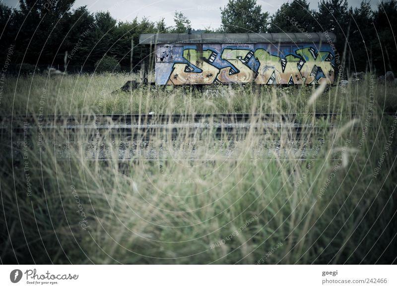 und niemand da, der es bewundert Natur alt Himmel Pflanze Wolken Gras Landschaft Graffiti Umwelt Sträucher Schriftzeichen Gleise Schienenverkehr Güterzug