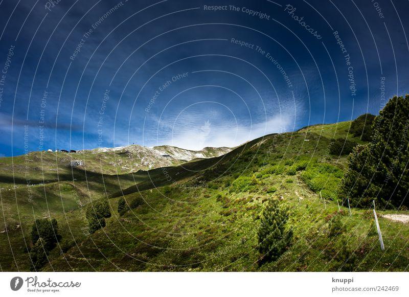 2000 m.ü.M Natur schön Himmel weiß grün blau Sommer Gras Berge u. Gebirge Landschaft wandern Umwelt groß Sträucher Alpen wild