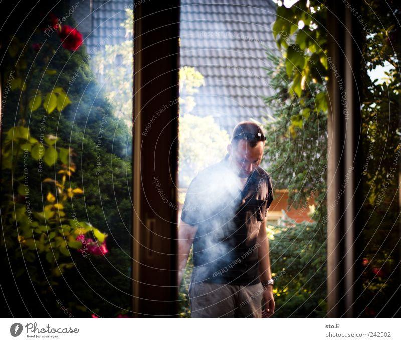 geräuchert Pflanze Sommer Erholung Leben Garten Wohnung Häusliches Leben Freizeit & Hobby Ernährung Schönes Wetter planen Rauch Duft Appetit & Hunger Gesellschaft (Soziologie) Wohnzimmer