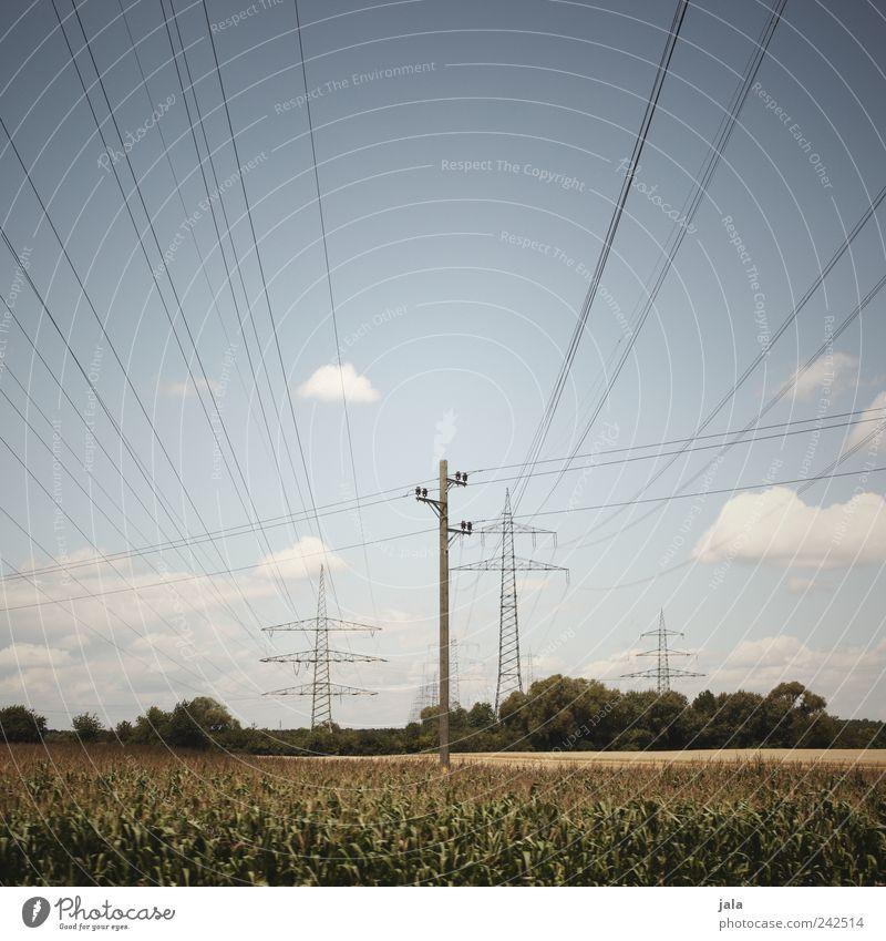 strom Himmel Natur Pflanze Sommer Wolken Umwelt Landschaft Feld Elektrizität Unendlichkeit Strommast Energie