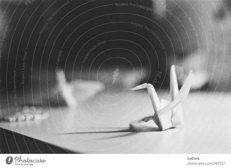 paper wings weiß ruhig träumen Vogel Kunst klein elegant Tisch Papier ästhetisch Dekoration & Verzierung Kultur Vergänglichkeit Warmherzigkeit Konzentration