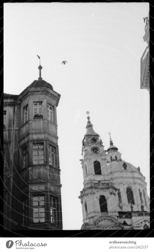 Prager Friedenstaube alt Haus dunkel Freiheit Gebäude hell Vogel Architektur fliegen Fassade Hoffnung modern Kirche Frieden Flügel