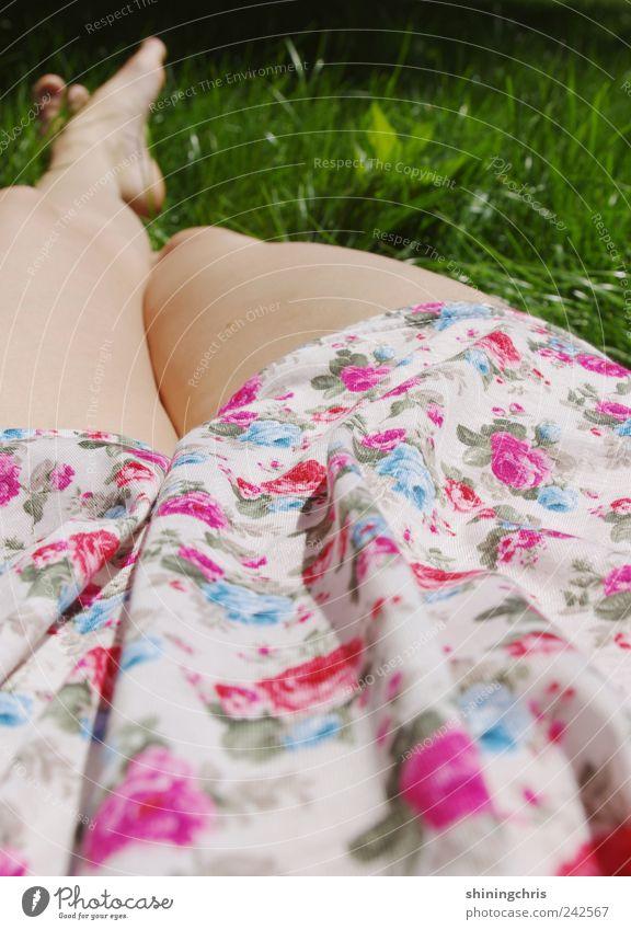 chillen Mensch Natur schön Sommer ruhig Erwachsene Erholung feminin Wiese Gras träumen Zufriedenheit liegen Lifestyle Romantik Wellness
