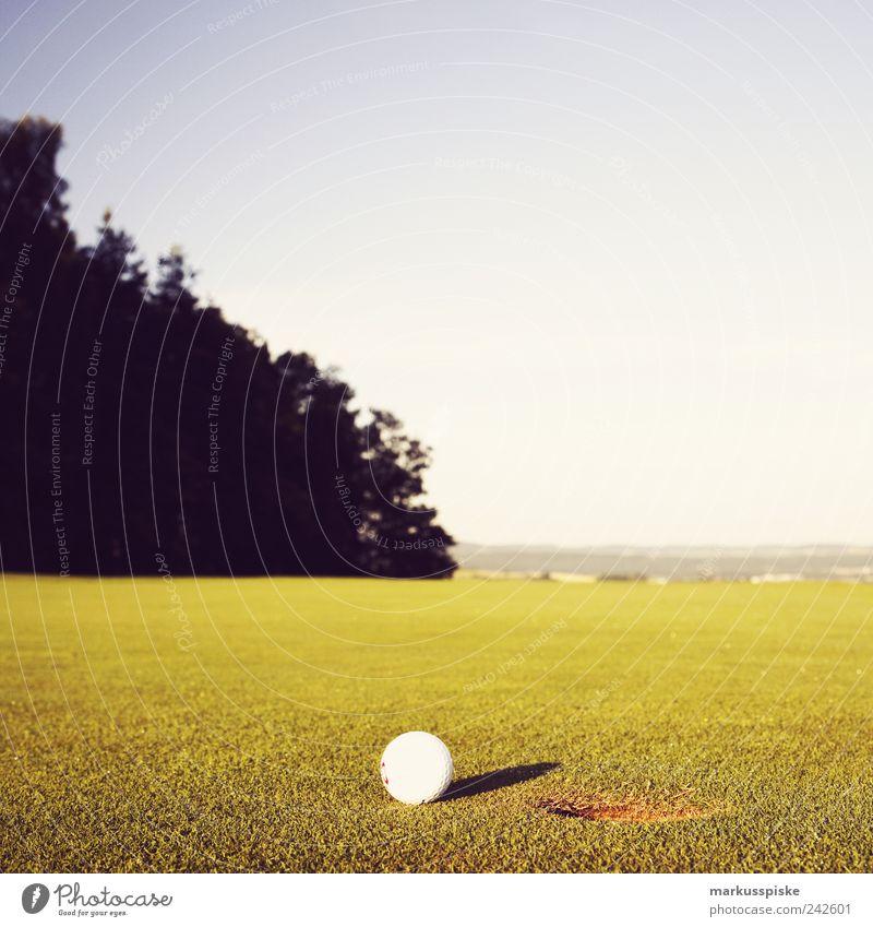 einlochen Ferien & Urlaub & Reisen ruhig Erholung Sport Spielen Feld Freizeit & Hobby Ausflug Tourismus Golf Wohlgefühl trendy Sommerurlaub Golfplatz Golfloch