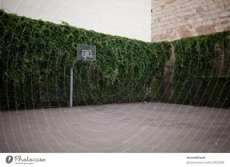 basketball. Freizeit & Hobby Spielen Ballsport Sportstätten Basketballkorb Basketballplatz Deutschland Europa Haus Gebäude Mauer Farbfoto Gedeckte Farben