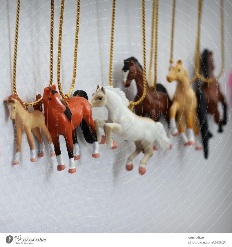 Mädchen-Kette Stil Design schön Kindheit Accessoire Schmuck Tier Pferd Tiergruppe schaukeln Pony Farbfoto
