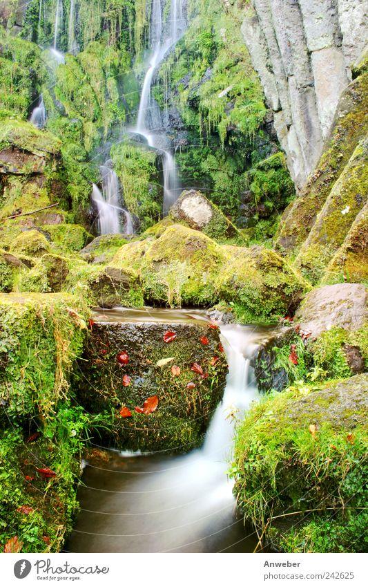 Wasserfall im Herbst Umwelt Natur Landschaft Pflanze Urelemente Wassertropfen Garten Park Bach Kassel Bad Wilhelmshöhe Hessen Bergpark Wilhelmshöhe Deutschland